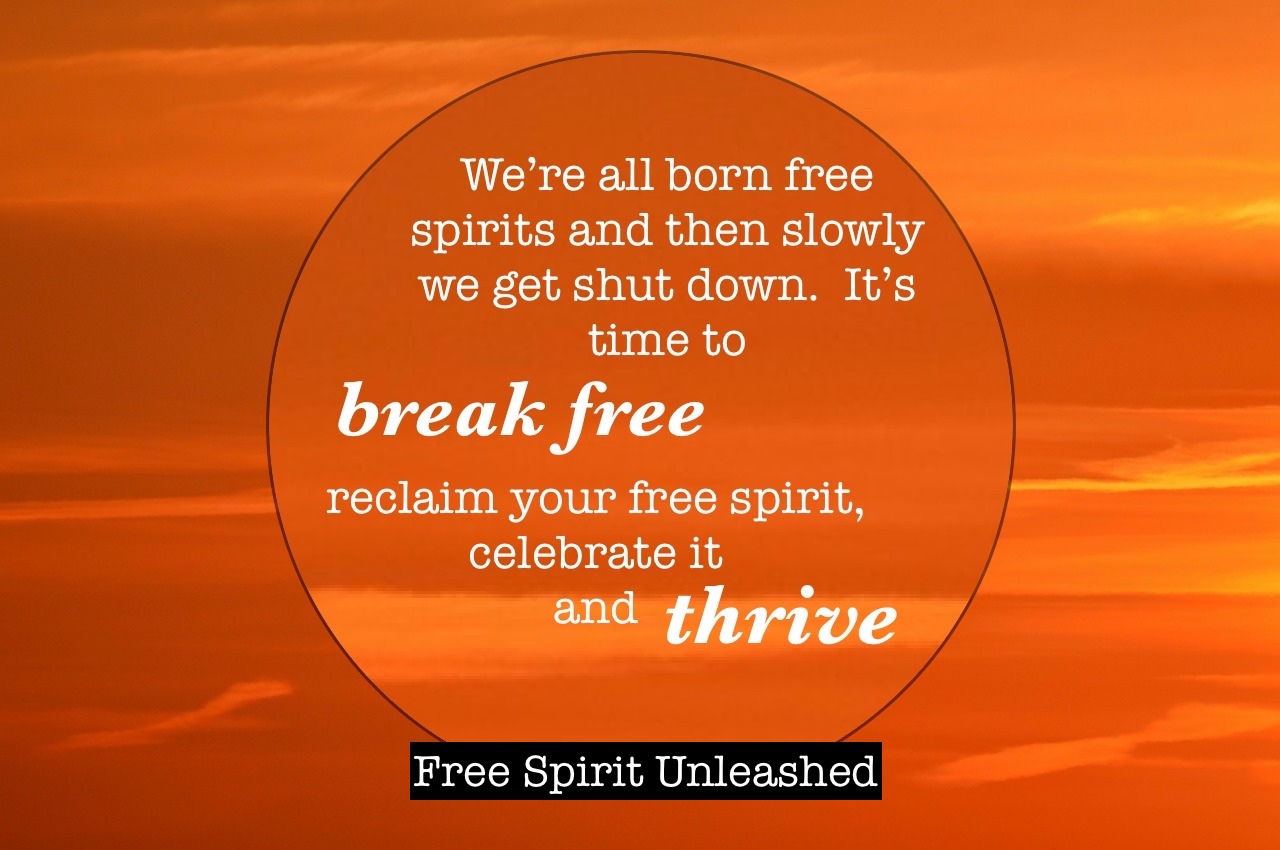 We are all born free spirits and then slowly we get shut down.  It's time to break free, reclaim your free spirit, celebrate it and thrive!